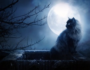 los hechizos de amor con luna llena